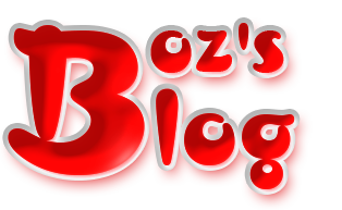 Boz's Kebap Logo